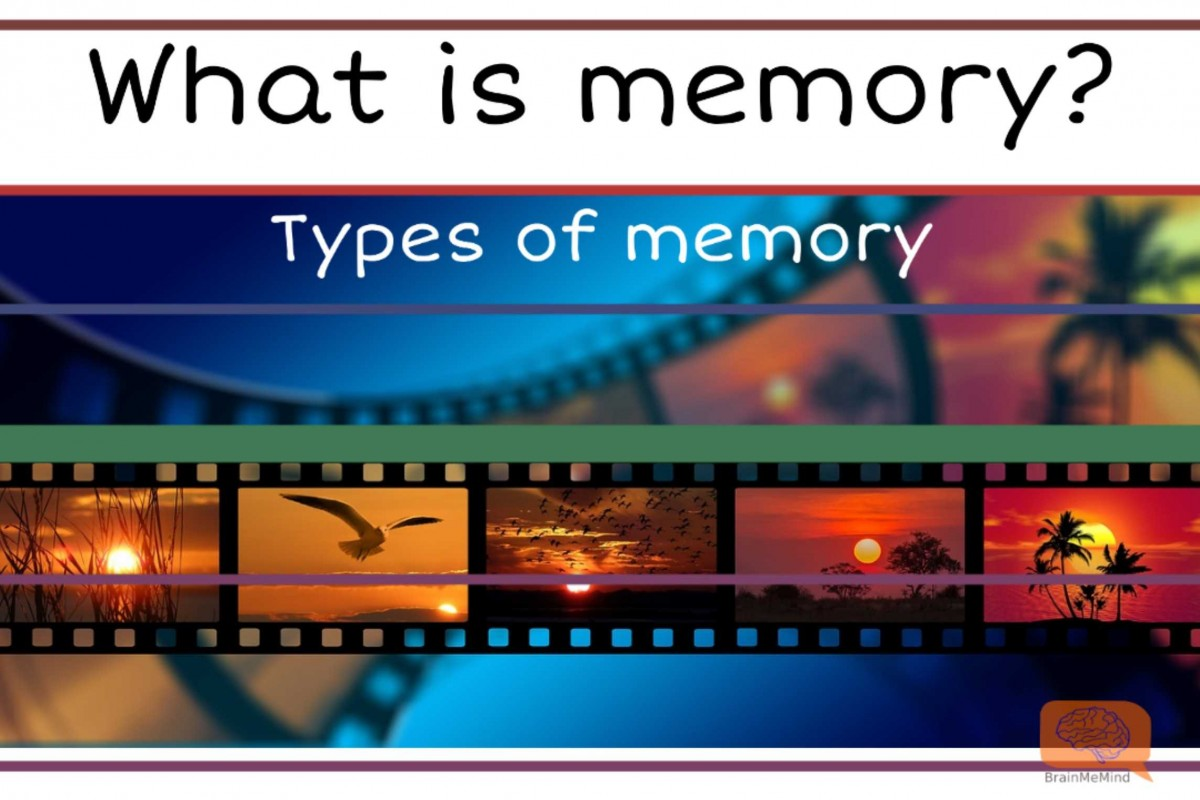 What is a memory? Types of memory