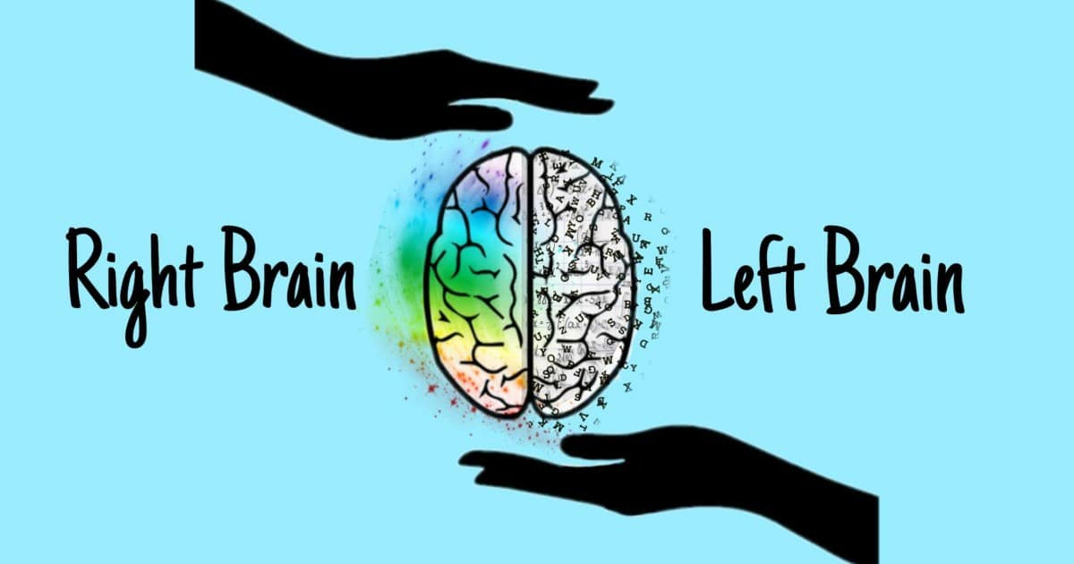 Left Brain vs Right Brain: Comparison and Qualities